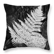 Mounts Botanical Garden 2365 Throw Pillow