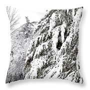Mourn The Winter Throw Pillow