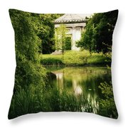 Mournful Reflections Throw Pillow