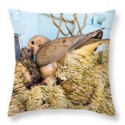 Mourning Dove And Chick Throw Pillow