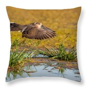 Mourning Dove In Flight Throw Pillow