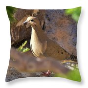 Mourning Dove On The Hillside Throw Pillow
