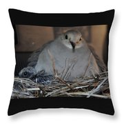 Mourning Dove With One Of Two Chicks Throw Pillow