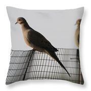 Mourning Doves Calverton New York Throw Pillow