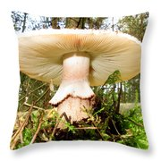Mouse View Throw Pillow