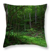 Mouth Of Pollly Hollow Throw Pillow