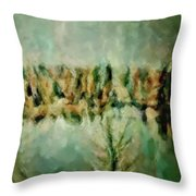Movie A Chance In The World Placid Lake Frozen In The Winter Fall Ice Bitter Cold Uninviting Cool Pa Throw Pillow