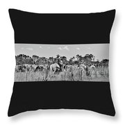 Moving Cattle Throw Pillow