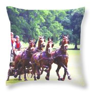 Moving Quickly Throw Pillow