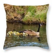 Moving The Brood Throw Pillow