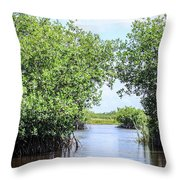 Moving The Glades Of Roatan Throw Pillow