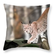 Moving Through The Forest Throw Pillow