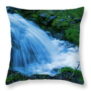 Moving Water Can Move Your Soul Throw Pillow