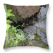 Moving Water Throw Pillow