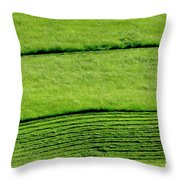 Mowing Hay  Throw Pillow by Thomas R Fletcher