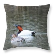 Mr And Mrs Canvasback Throw Pillow