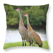 Mr And Mrs Crane Throw Pillow