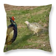Mr And Mrs Pheasant Throw Pillow