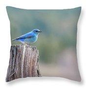 Mr. Bluebird Throw Pillow