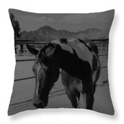 Mr Ed In Black And White Throw Pillow