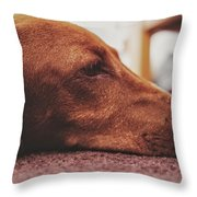 Mr Fritz Pose Laying Down Throw Pillow