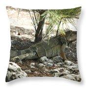 Mr. Green Throw Pillow