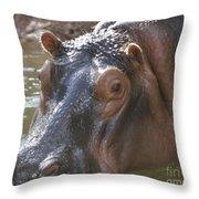 Mr. Hippo Throw Pillow