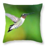 Mr. Humming Bird Throw Pillow