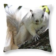 Mr. Inquisitive II Throw Pillow by Betsy Knapp