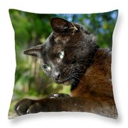 Mr. Night Throw Pillow