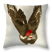 Mr. P On The Wing Throw Pillow