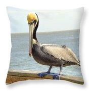 Mr. Pelican Throw Pillow