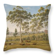 Mr Robinson's House On The Derwent Van Diemen's Land Throw Pillow