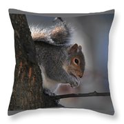 Mr S Snacking Throw Pillow