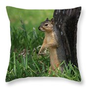 Mr. Squirrel Throw Pillow