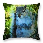 Mr. Squirrel Throw Pillow