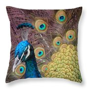 Mr. Twinkletoes Throw Pillow