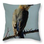 Mrs. Bluebird Throw Pillow