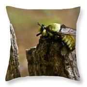 Mrs. Fly Throw Pillow