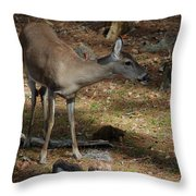 Ms Doe Throw Pillow