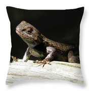Ms. Liz Throw Pillow