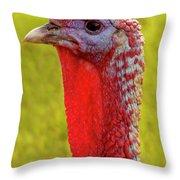 Ms. Turkey Throw Pillow