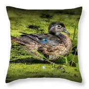 Ms. Wood Duck Throw Pillow