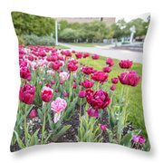 Msu Spring 19 Throw Pillow