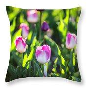 Msu Spring 2 Throw Pillow