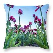 Msu Spring 20 Throw Pillow