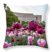 Msu Spring 21 Throw Pillow