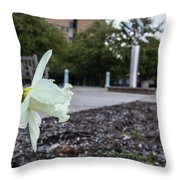 Msu Spring 22 Throw Pillow