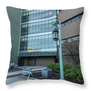 Msu Spring 26 Throw Pillow