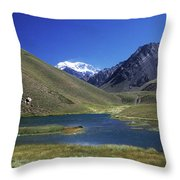 Mt Aconcagua And Laguna Horcones Throw Pillow